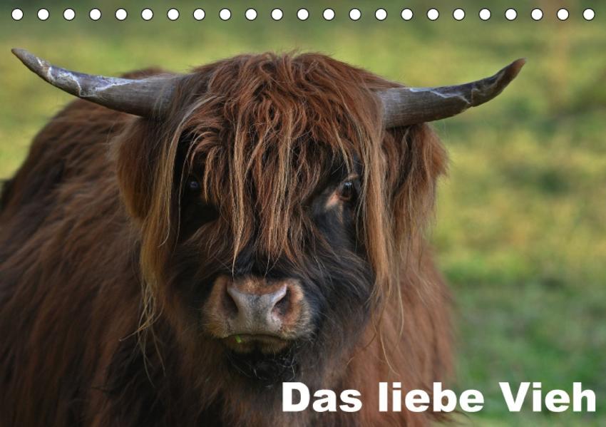 Das liebe Vieh (Tischkalender 2017 DIN A5 quer) - Coverbild
