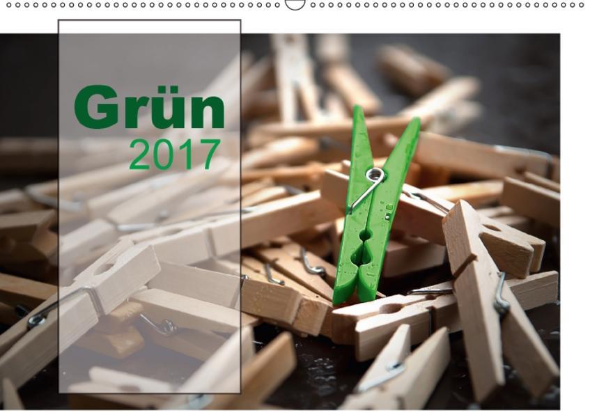 Grün / Geburtstagskalender / Terminplaner (Wandkalender 2017 DIN A2 quer) - Coverbild