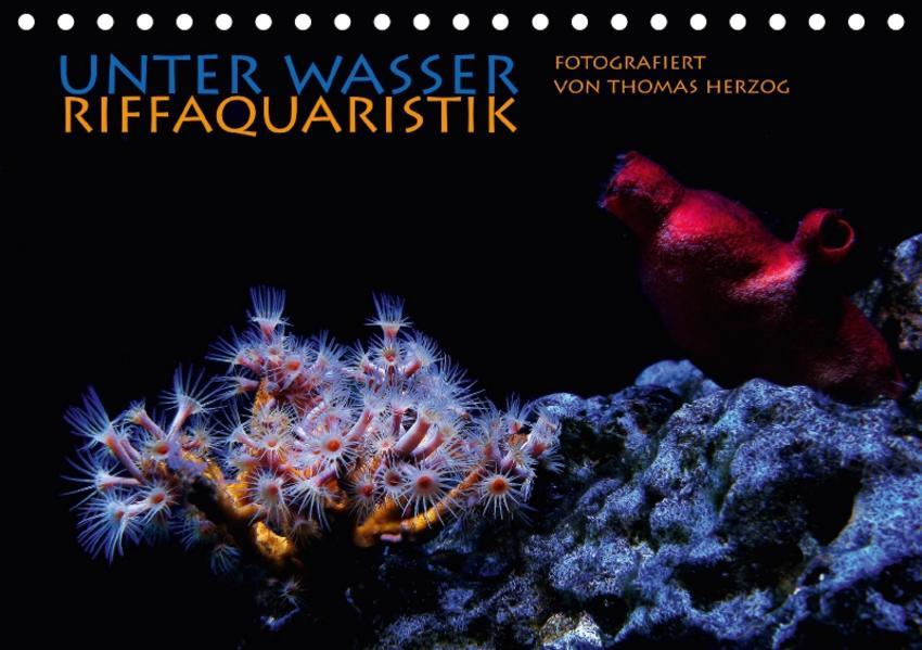 UNTER WASSER Riffaquaristik (Tischkalender 2017 DIN A5 quer) - Coverbild