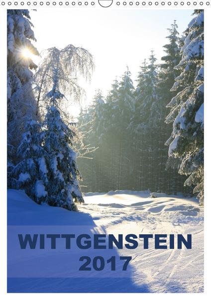 Wittgenstein / Planer (Wandkalender 2017 DIN A3 hoch) - Coverbild
