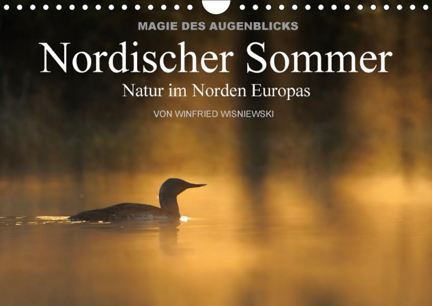 Magie des Augenblicks - Nordischer Sommer - Natur im Norden Europas (Wandkalender 2017 DIN A4 quer) - Coverbild