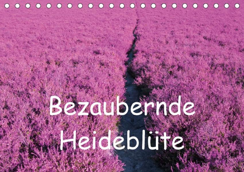 Bezaubernde Heideblüte (Tischkalender 2017 DIN A5 quer) - Coverbild