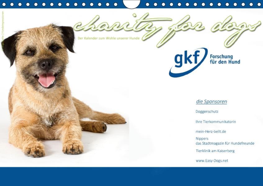 Charity for Dogs - der Kalender zum Wohle unserer Hunde (Wandkalender 2017 DIN A4 quer) - Coverbild