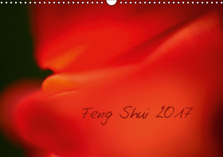 Feng Shui 2017 / Geburtstagskalender (Wandkalender 2017 DIN A3 quer) - Coverbild