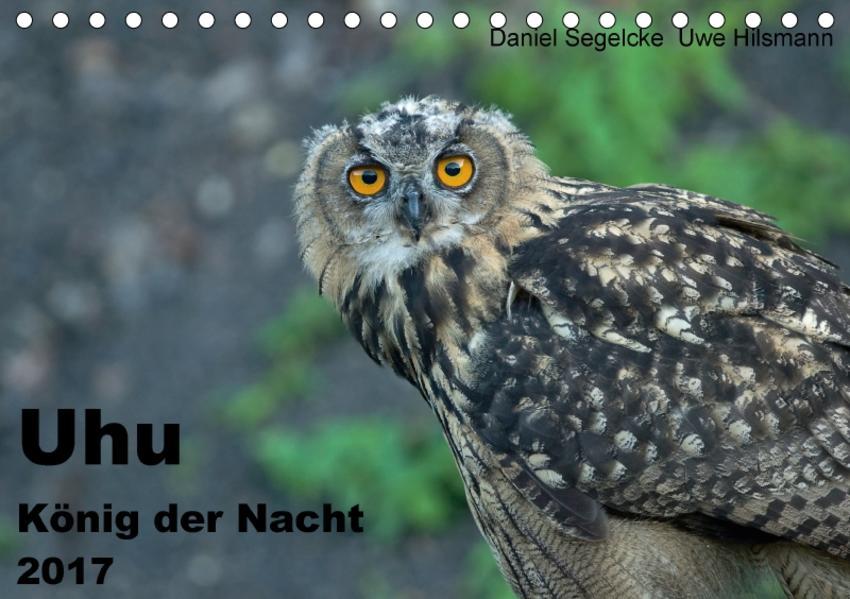 Uhu - König der Nacht (Tischkalender 2017 DIN A5 quer) - Coverbild