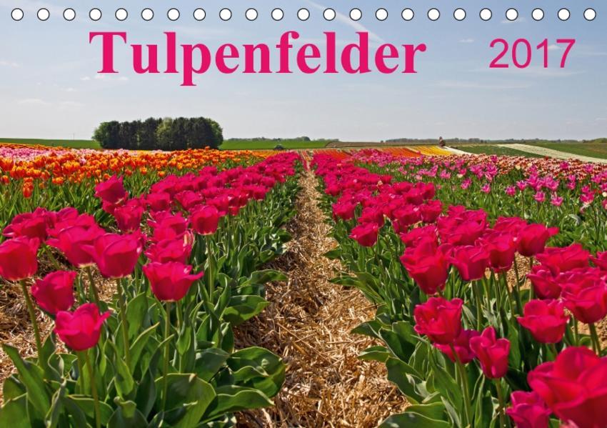 Tulpenfelder 2017 (Tischkalender 2017 DIN A5 quer) - Coverbild