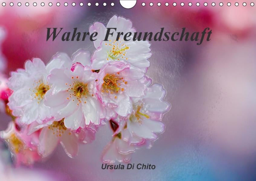 Wahre Freundschaft / AT-Version (Wandkalender 2017 DIN A4 quer) - Coverbild