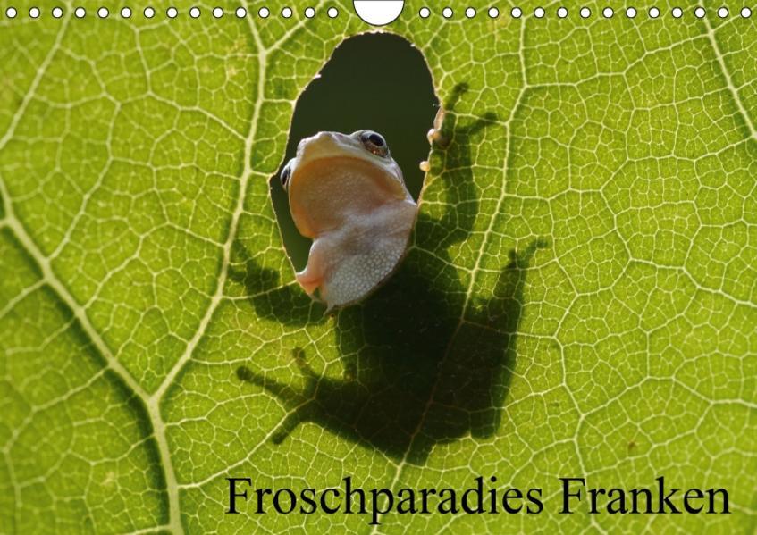Froschparadies Franken (Wandkalender 2017 DIN A4 quer) - Coverbild
