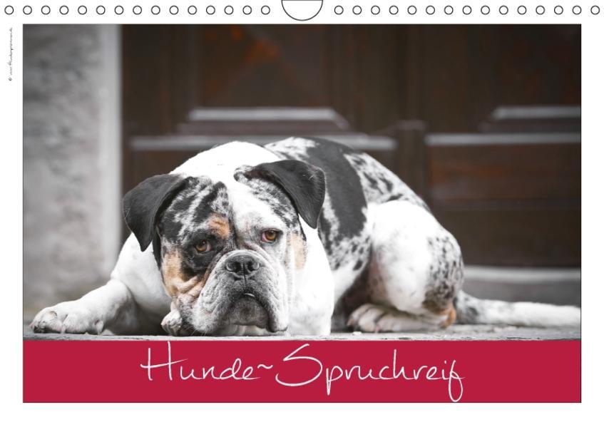 Hunde-Spruchreif (Wandkalender 2017 DIN A4 quer) - Coverbild
