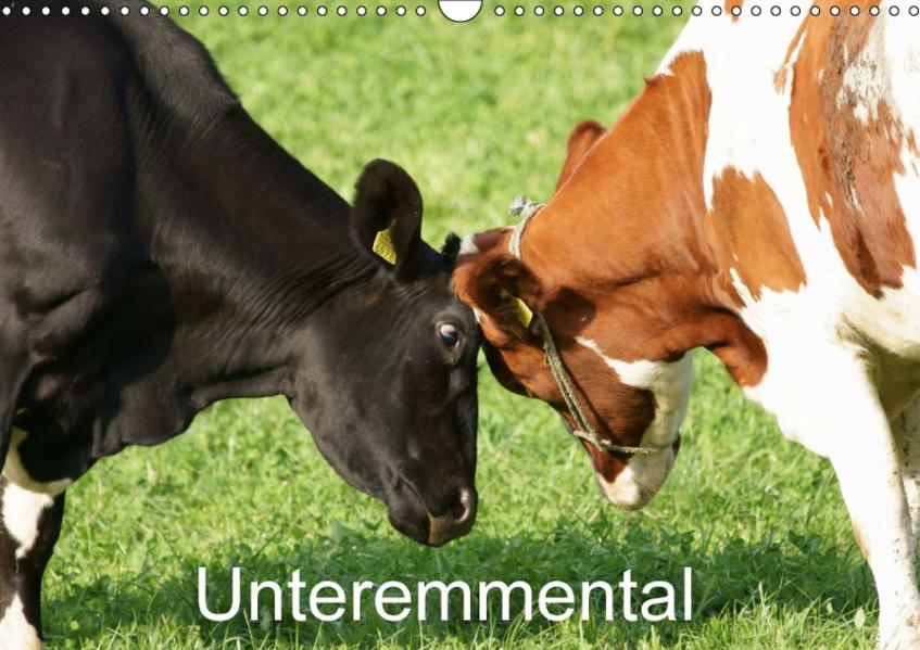 UnteremmentalCH-Version  (Wandkalender 2017 DIN A3 quer) - Coverbild