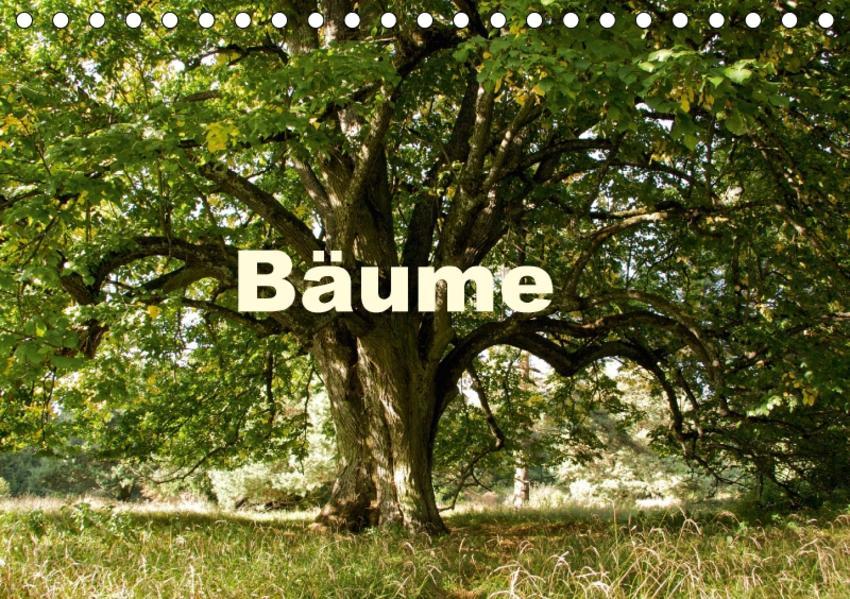 Bäume (Tischkalender 2017 DIN A5 quer) - Coverbild