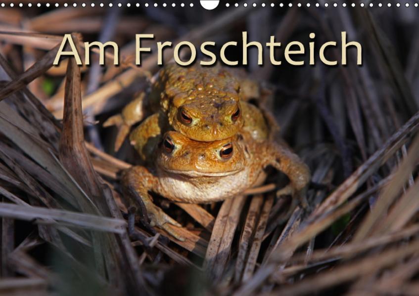 Am Froschteich / CH-Version (Wandkalender 2017 DIN A3 quer) - Coverbild