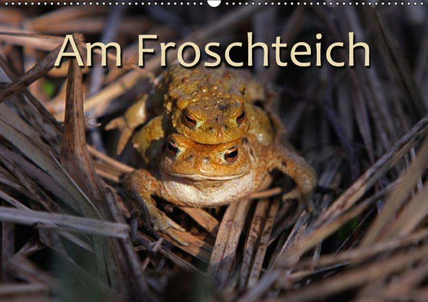 Am Froschteich / CH-Version (Wandkalender 2017 DIN A2 quer) - Coverbild