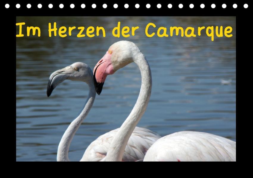 Im Herzen der Camargue (Tischkalender 2017 DIN A5 quer) - Coverbild