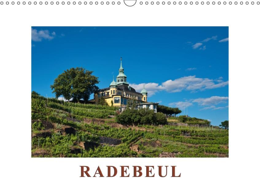 Radebeul / Geburtstagskalender (Wandkalender 2017 DIN A3 quer) - Coverbild