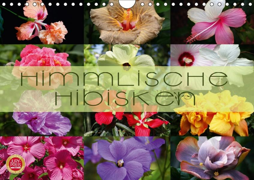 Himmlische Hibisken (Wandkalender 2017 DIN A4 quer) - Coverbild