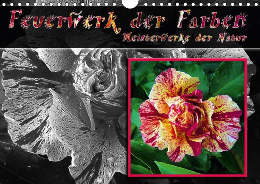 Feuerwerk der Farben - Meisterwerke der Natur / Geburtstagskalender (Wandkalender 2017 DIN A4 quer) - Coverbild