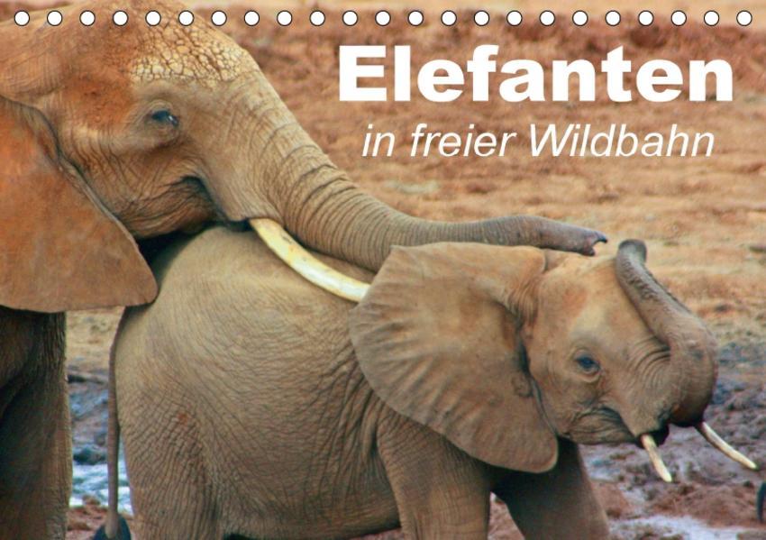 Elefanten in freier Wildbahn (Tischkalender 2017 DIN A5 quer) - Coverbild