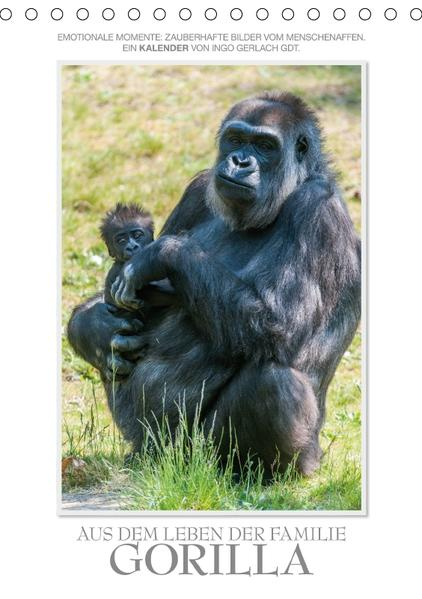 Emotionale Momente: Aus dem Leben der Familie Gorilla. (Tischkalender 2017 DIN A5 hoch) - Coverbild