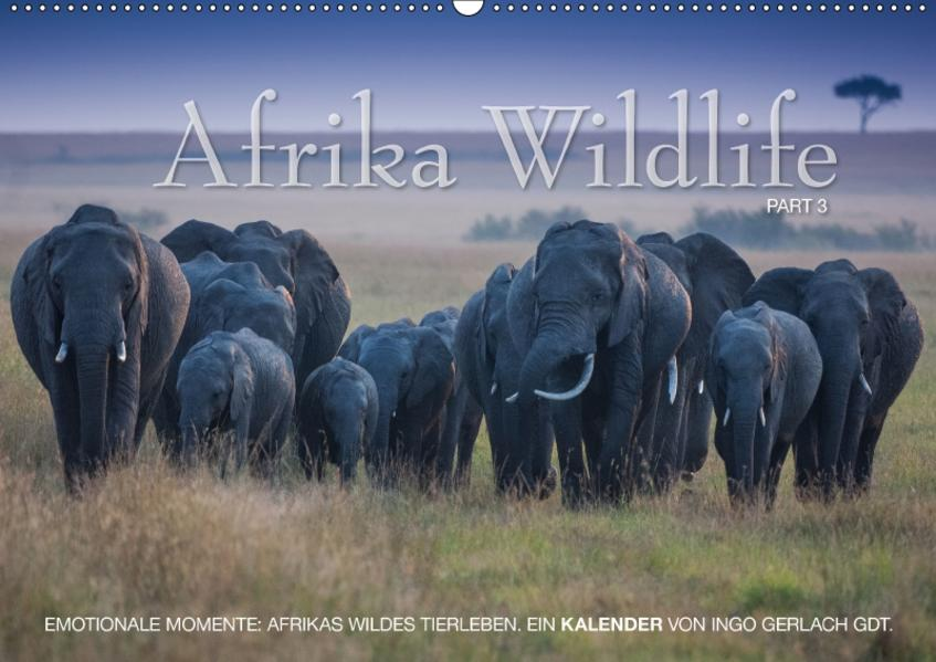 Emotionale Momente: Afrika Wildlife. Part 3. / CH-Version (Wandkalender 2017 DIN A2 quer) - Coverbild