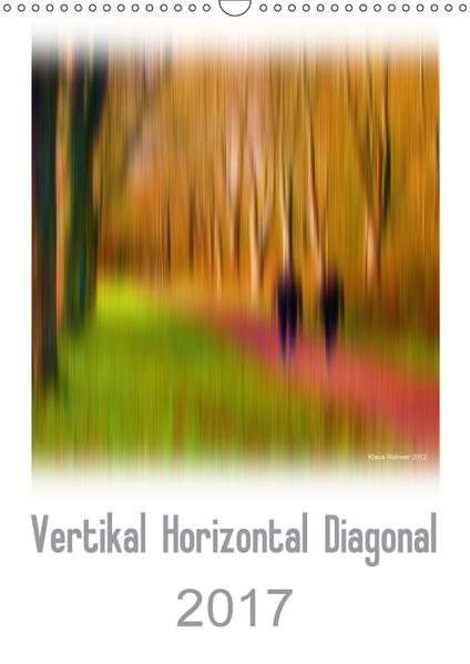 Vertikal Horizontal Diagonal / CH-Version (Wandkalender 2017 DIN A3 hoch) - Coverbild