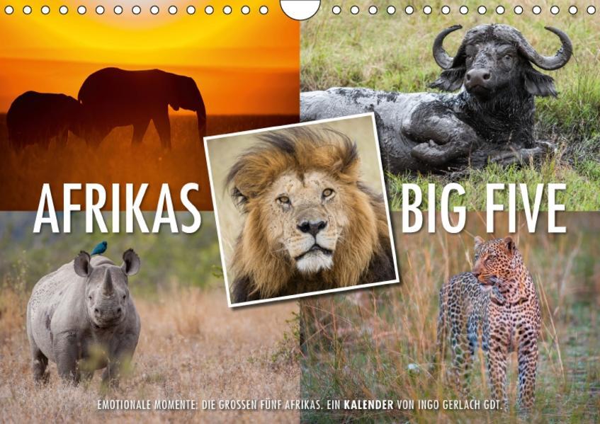 Emotionale Momente: Afrikas Big Five / CH-Version (Wandkalender 2017 DIN A4 quer) - Coverbild