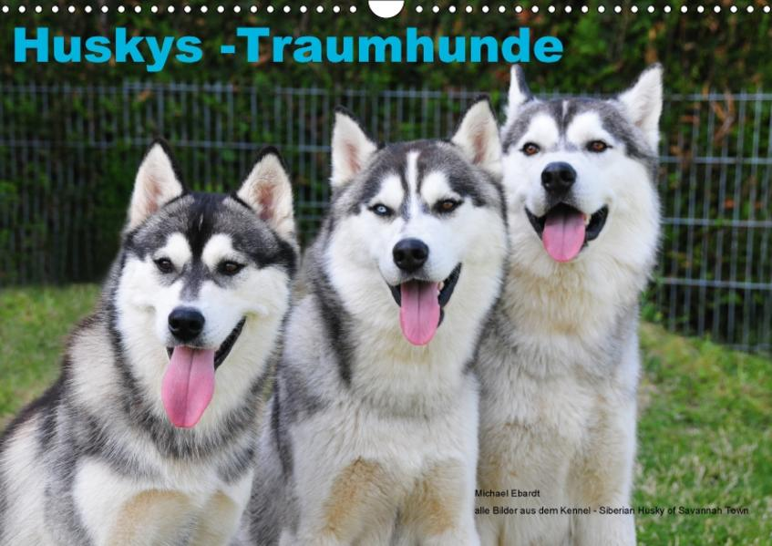 Huskys - Traumhunde (Wandkalender 2017 DIN A3 quer) - Coverbild