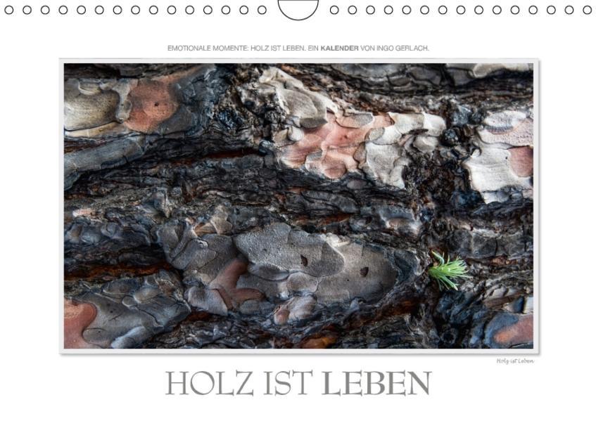 Emotionale Momente: Holz ist Leben. (Wandkalender 2017 DIN A4 quer) - Coverbild