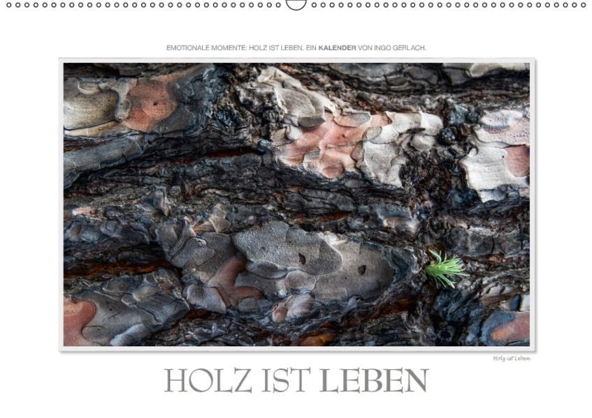 Emotionale Momente: Holz ist Leben. (Wandkalender 2017 DIN A2 quer) - Coverbild