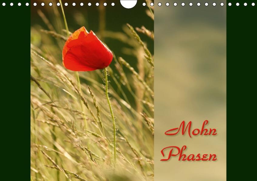Mohn-Phasen / Geburtstagskalender (Wandkalender 2017 DIN A4 quer) - Coverbild