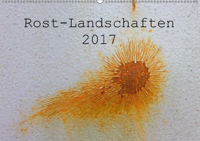 ROST-LANDSCHAFTEN 2017 / CH-Version (Wandkalender 2017 DIN A2 quer) - Coverbild