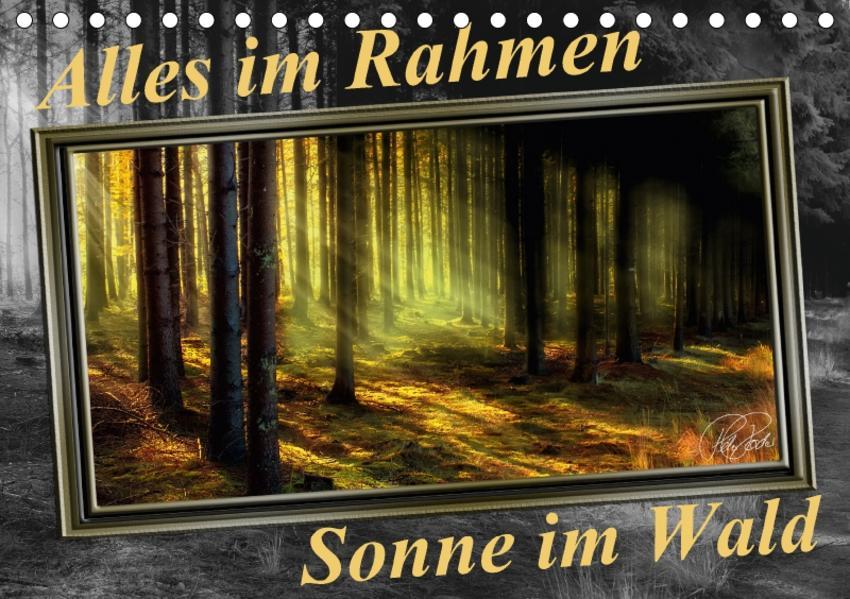 Alles im Rahmen - Sonne im Wald / CH-Version (Tischkalender 2017 DIN A5 quer) - Coverbild
