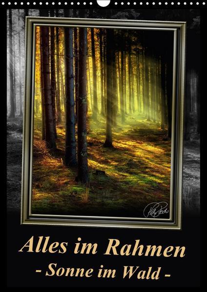 Alles im Rahmen - Sonne im Wald / CH-Version / Planer (Wandkalender 2017 DIN A3 hoch) - Coverbild