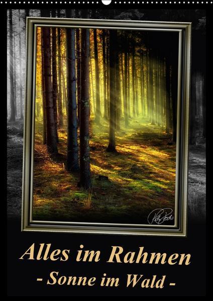 Alles im Rahmen - Sonne im Wald / CH-Version / Planer (Wandkalender 2017 DIN A2 hoch) - Coverbild