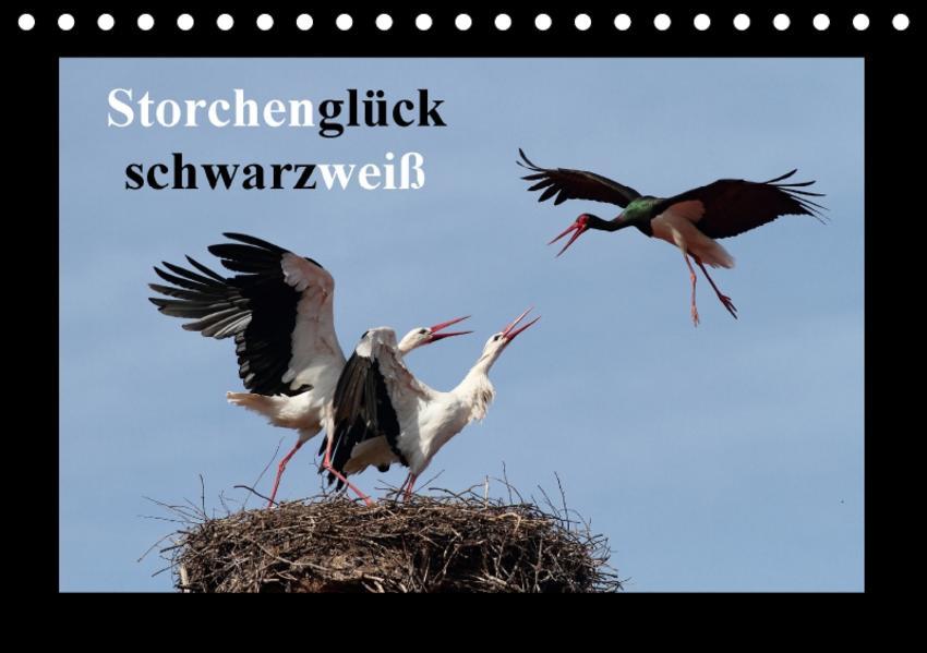 Storchenglück schwarzweiß (Tischkalender 2017 DIN A5 quer) - Coverbild