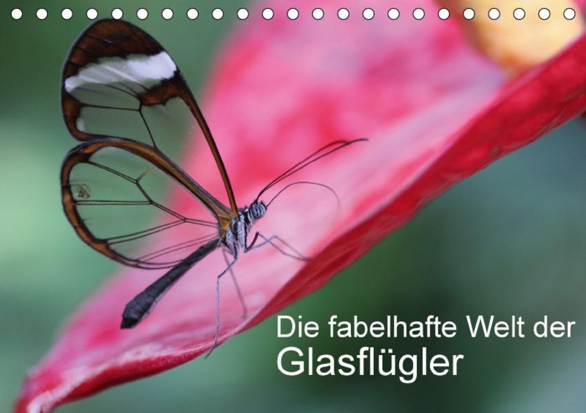 Die fabelhafte Welt der Glasflügler (Tischkalender 2017 DIN A5 quer) - Coverbild