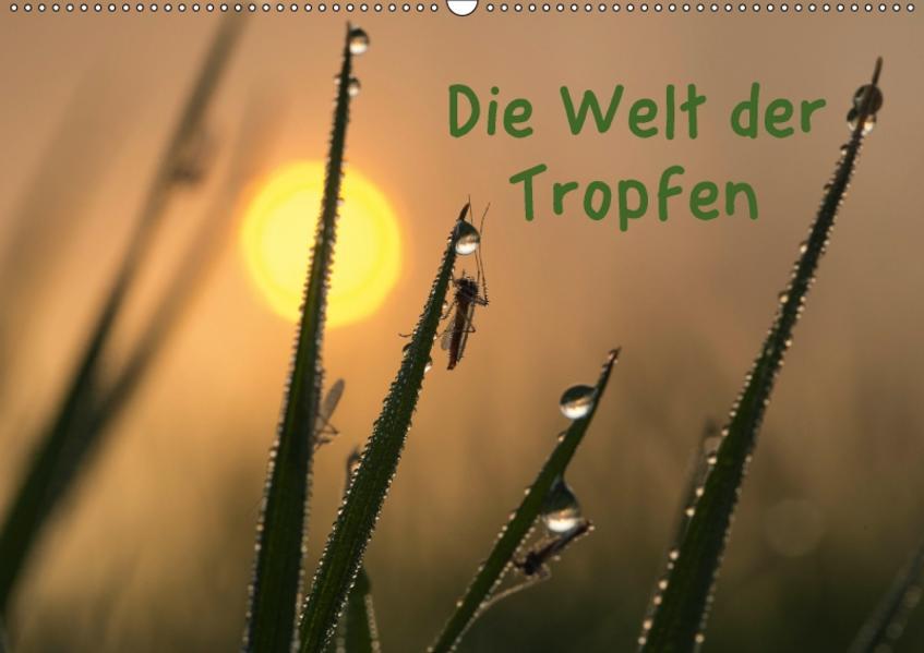 Die Welt der Tropfen / CH-Version (Wandkalender 2017 DIN A2 quer) - Coverbild