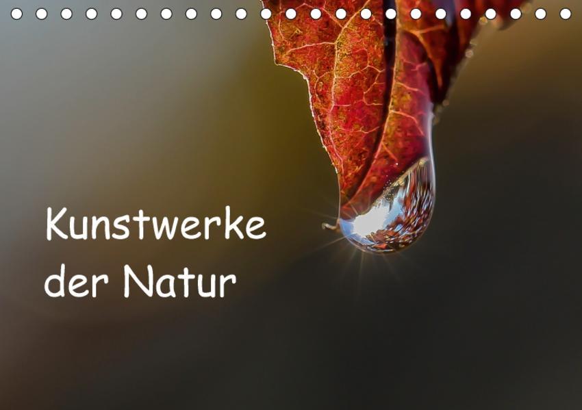 Kunstwerke der Natur / CH-Version (Tischkalender 2017 DIN A5 quer) - Coverbild