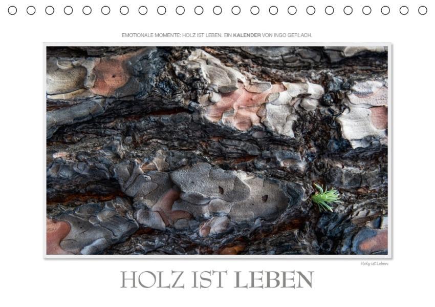 Emotionale Momente: Holz ist Leben. / CH-Version (Tischkalender 2017 DIN A5 quer) - Coverbild