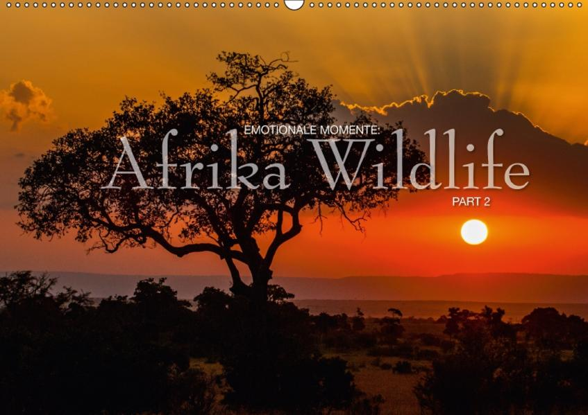 Emotionale Momente: Afrika Wildlife Part 2 / CH-Version (Wandkalender 2017 DIN A2 quer) - Coverbild