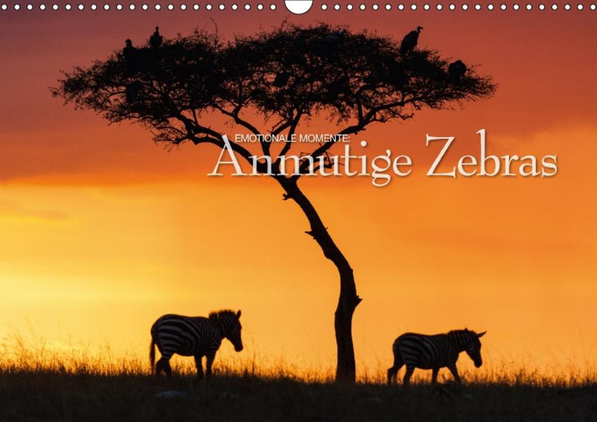 Emotionale Momente: Anmutige Zebras / CH-Version (Wandkalender 2017 DIN A3 quer) - Coverbild