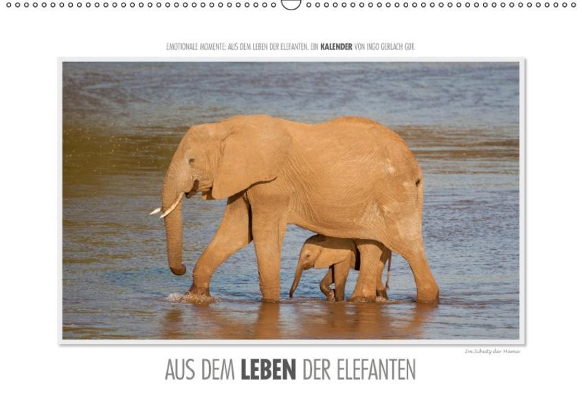 Emotionale Momente: Aus dem Leben der Elefanten. / CH-Version (Wandkalender 2017 DIN A2 quer) - Coverbild