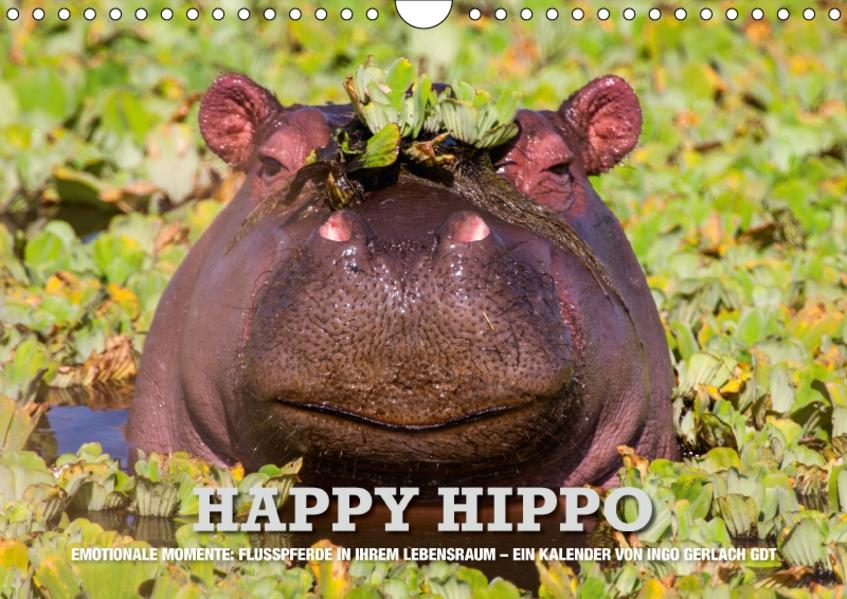 Emotionale Momente. Happy Hippo / CH-Version (Wandkalender 2017 DIN A4 quer) - Coverbild