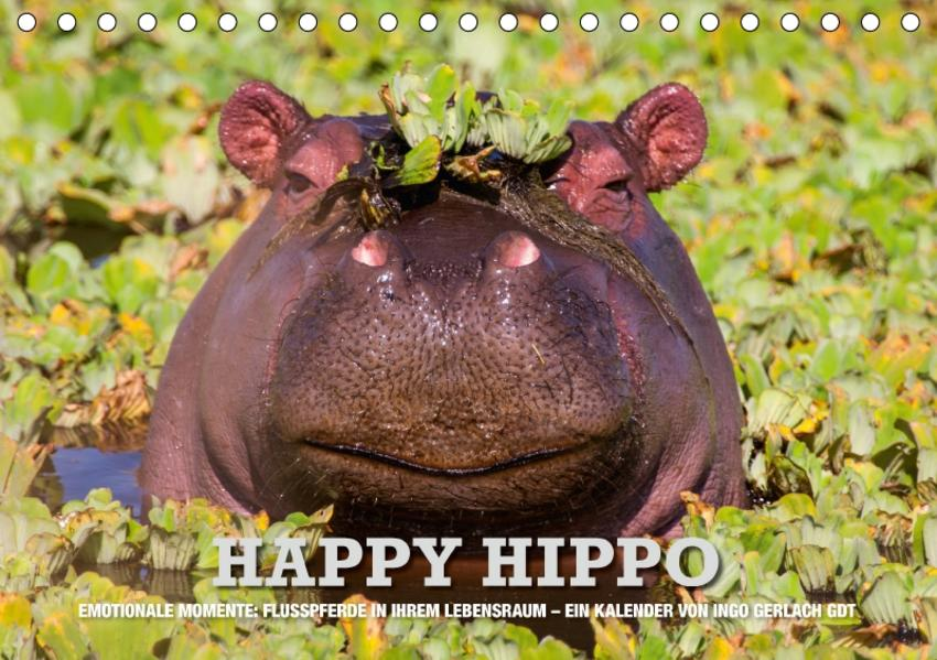 Emotionale Momente. Happy Hippo / CH-Version (Tischkalender 2017 DIN A5 quer) - Coverbild