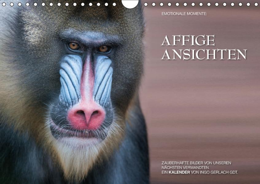 Emotionale Momente: Affige Ansichten / CH-Version (Wandkalender 2017 DIN A4 quer) - Coverbild