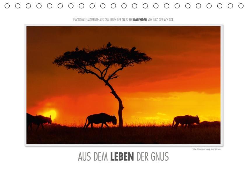 Emotionale Momente: Aus dem Leben der Gnus. / CH-Version (Tischkalender 2017 DIN A5 quer) - Coverbild
