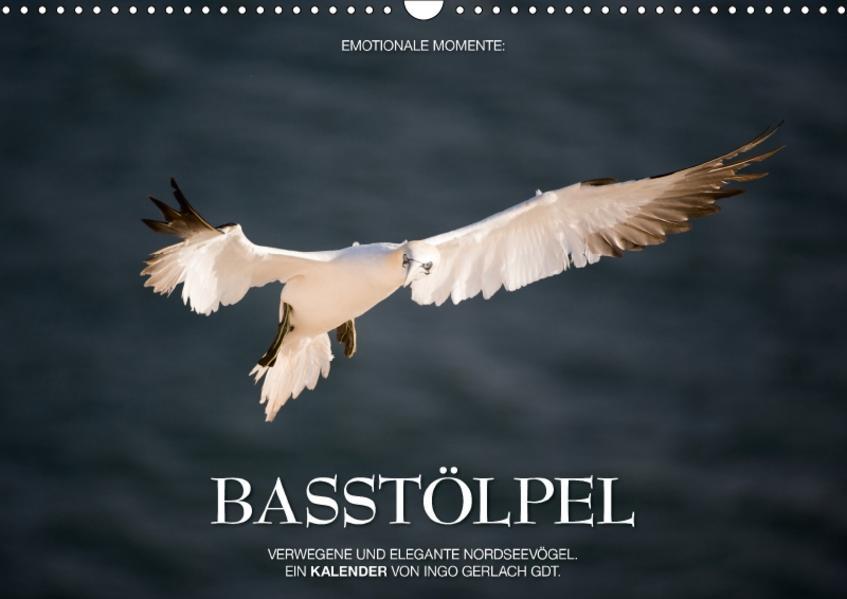 Emotionale Momente: Basstölpel / CH-Version (Wandkalender 2017 DIN A3 quer) - Coverbild