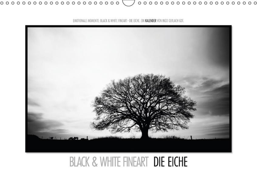Emotionale Momente: Black & White Fineart - die Eiche. / CH-Version (Wandkalender 2017 DIN A3 quer) - Coverbild