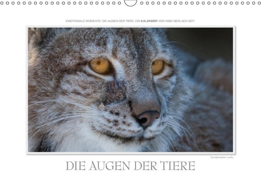 Emotionale Momente: Die Augen der Tiere. / CH-Version (Wandkalender 2017 DIN A3 quer) - Coverbild