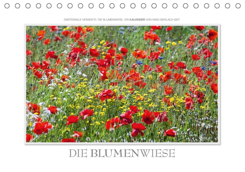 Emotionale Momente: Die Blumenwiese. / CH-Version (Tischkalender 2017 DIN A5 quer) - Coverbild